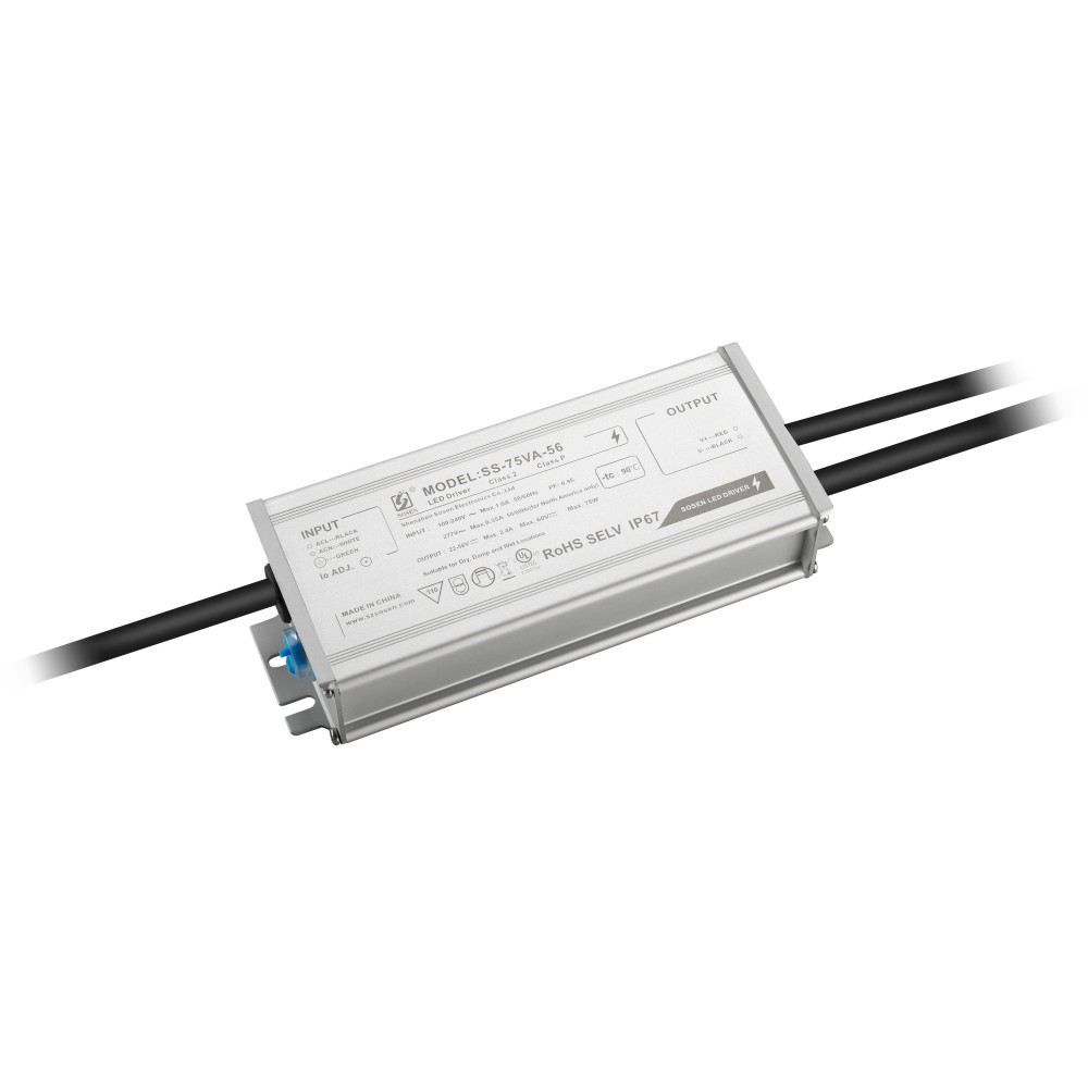 Driver Magnetrack/ Microsystem